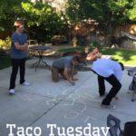 Tacos! Tacos! Get Your Tacos